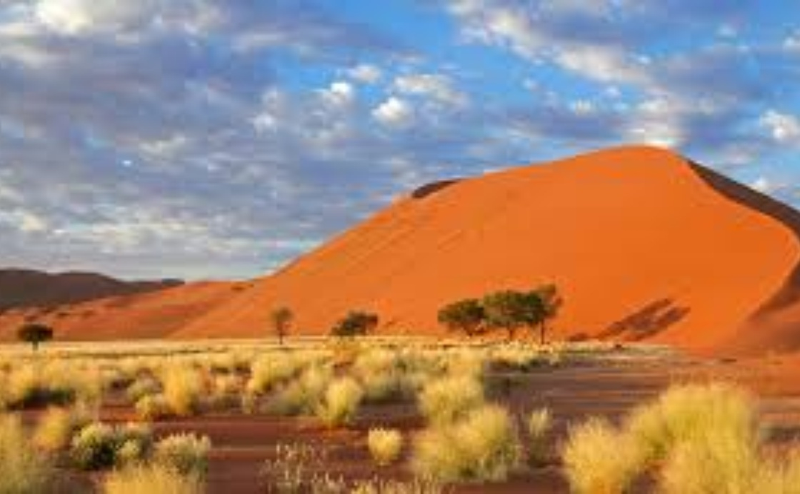 Strategic and Institutional Recommendations for Namibia's National Sustainable Tourism Growth Strategy